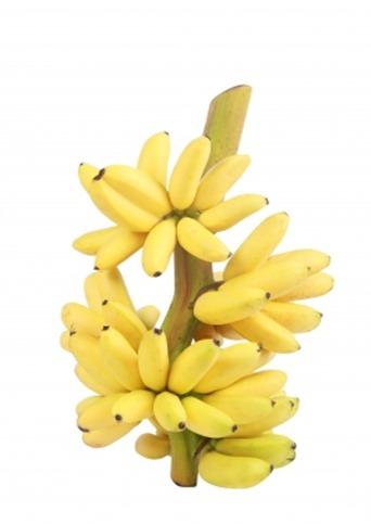Банан – плодът за спортисти
